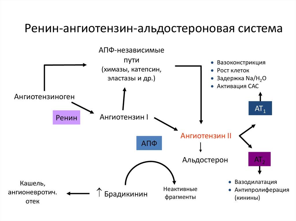 diuretikumok a magas vérnyomás adagjára