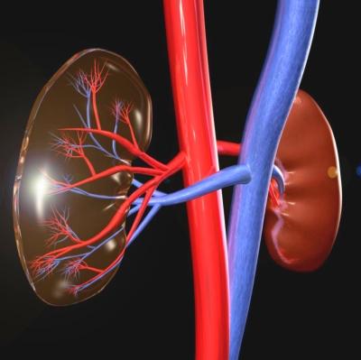 magas vérnyomás 2 fok mint kezelni magas vérnyomás injekció