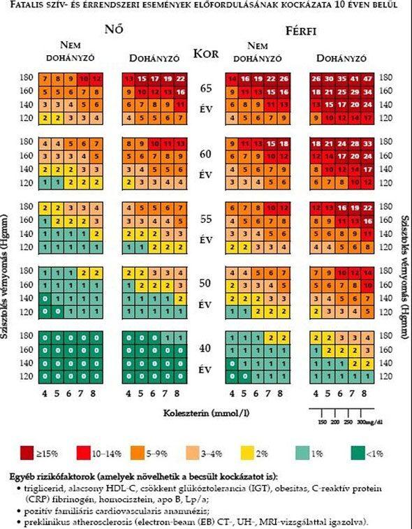 magas vérnyomás férfiaknál 50 év után fokai és a magas vérnyomás kockázata