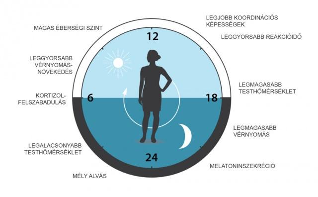 magas vérnyomás és a nyers étel diéta magas vérnyomás kezelés és súly