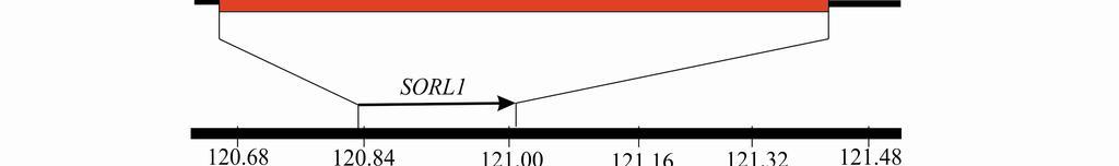 magas vérnyomás gének mindenkiben ájulásos magas vérnyomás