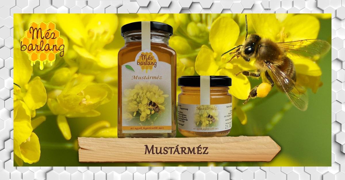 A virágpor hatásai - Méhunkundance.hu - Méhunkundance.hu - A legmézesebb web