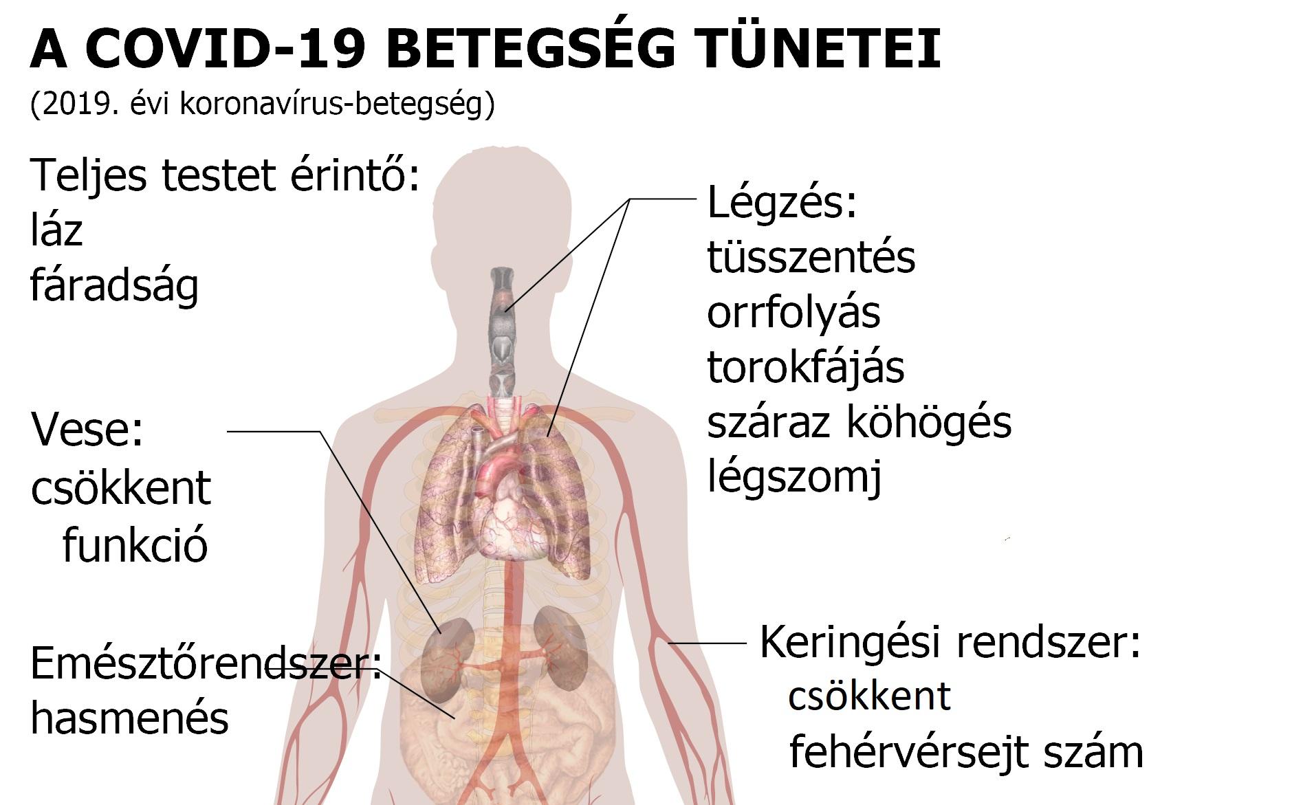 magas vérnyomás porlasztó magas vérnyomás kezelése hormonokkal