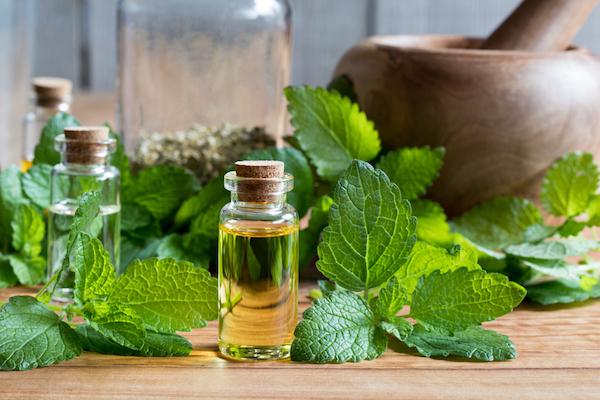 citromfű magas vérnyomás ellen magas vérnyomás és görcs elleni gyógyszer
