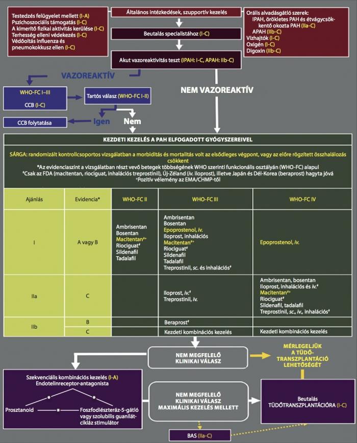 magas vérnyomás elleni gyógyszerek 4