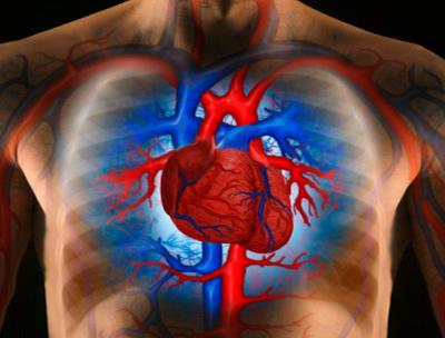 magas vérnyomás gének mindenkiben a magas vérnyomás szakaszainak kezelése
