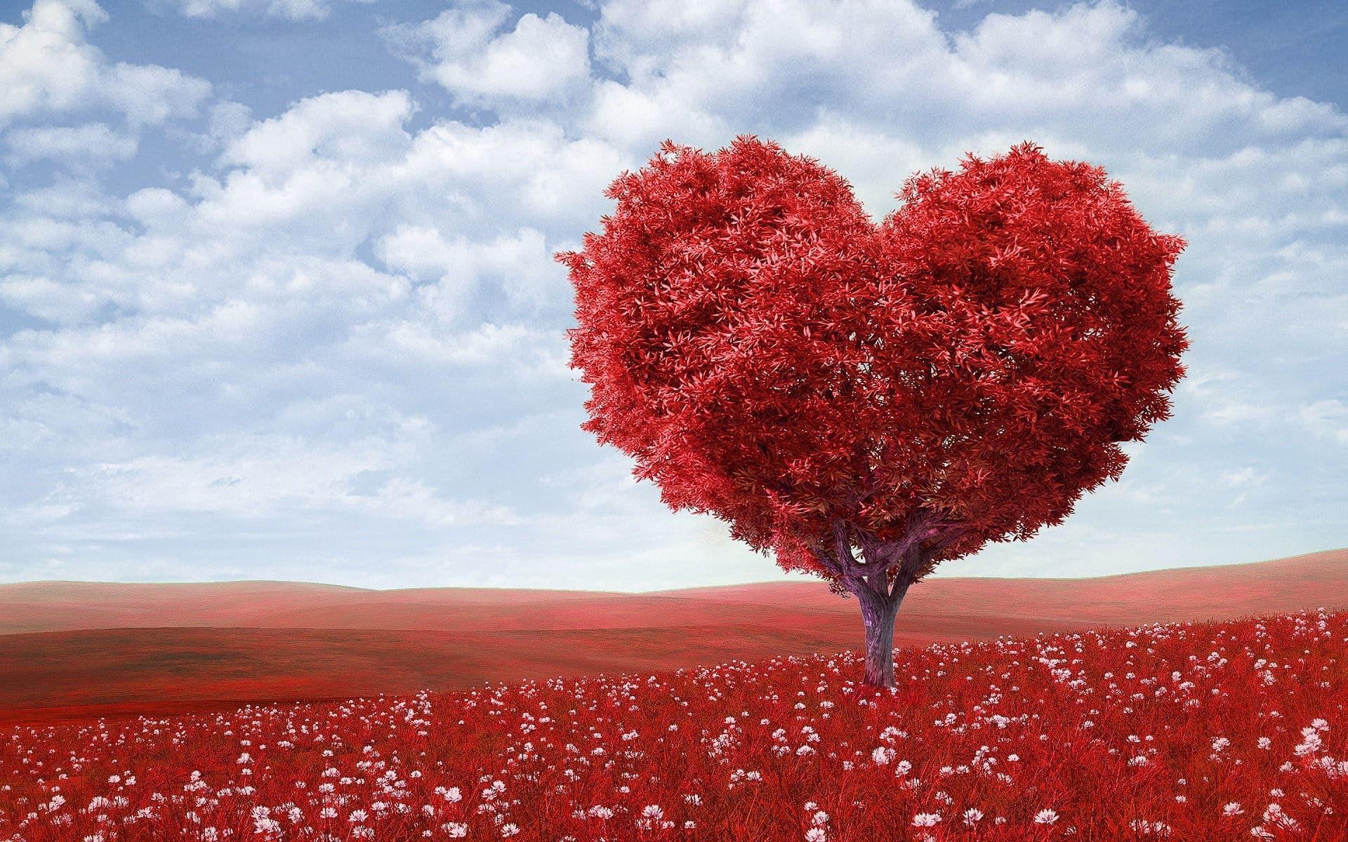 a szív magas vérnyomásának kardiológiája a magas vérnyomás lefolyásának jellemzői időseknél