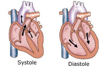 minden a magas vérnyomásról f-től z-ig magas vérnyomás és szauna kompatibilitás
