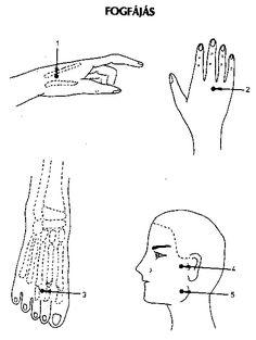 akupresszúra hipertónia képekben