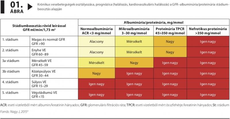 magas vérnyomás és krónikus vesebetegség hogyan lehet kilábalni a magas vérnyomásból otthon