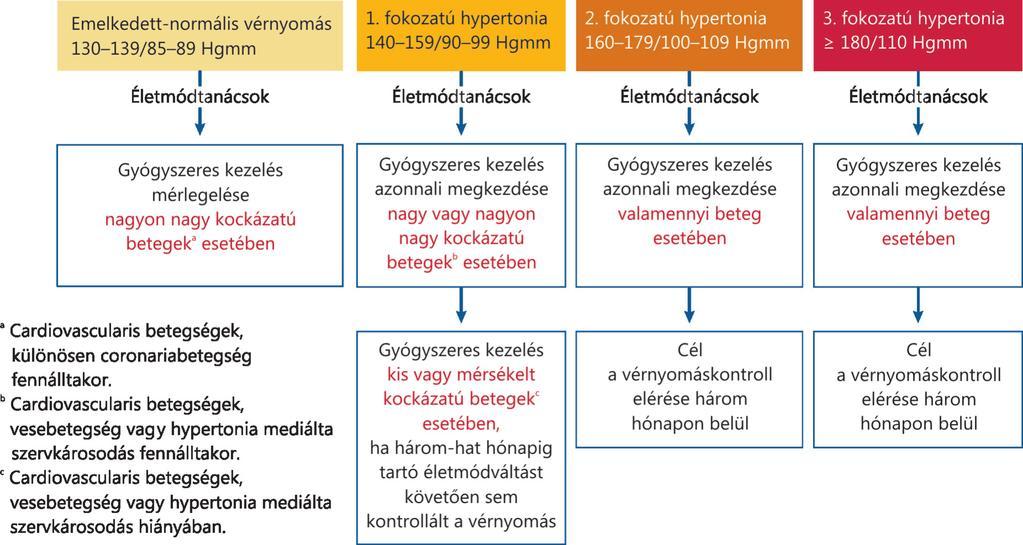 pulmonalis hipertónia 1 fok a magas vérnyomás szakaszok szerinti osztályozása